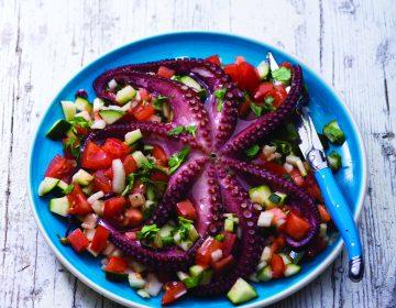 Salada fresca de polvo com tomate, pepino e perfume de coentros