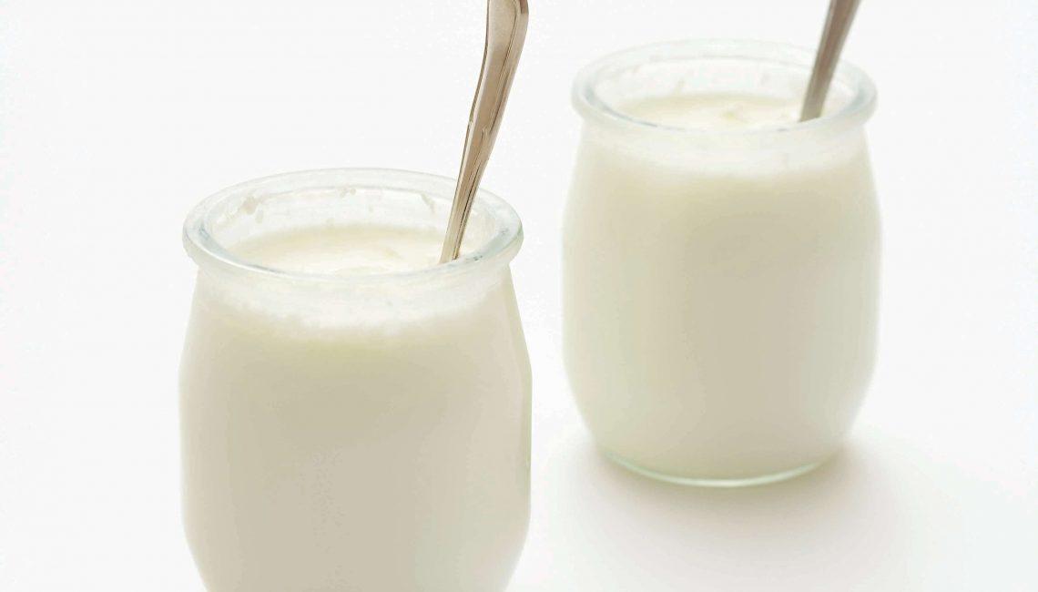 Iogurte e leites fermentados
